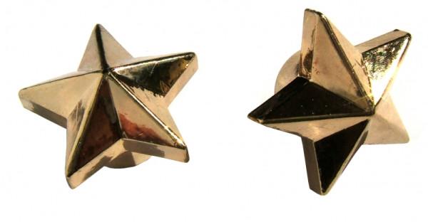 Kennzeichenschrauben Set, 2teilig, Stern, gold